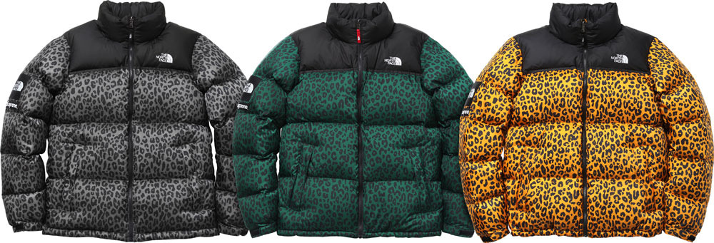 Winter 2011 North Face x Supreme Collab.